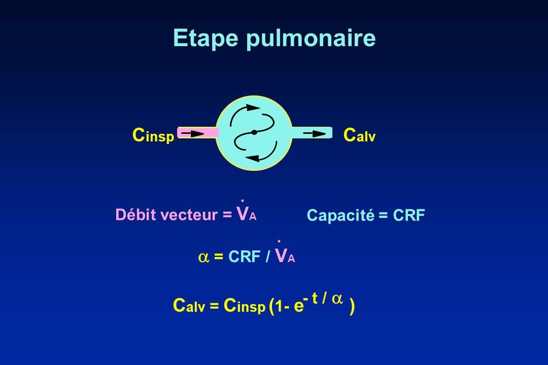 Etape pulmonaire Capacité = CRF J Débit vecteur = V A. = CRF / V A. C alv = C insp ( 1- e ) - t / C insp C alv