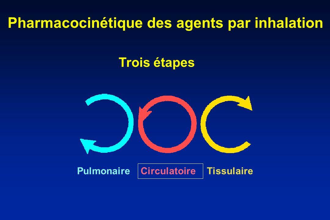 Pharmacocinétique des agents par inhalation Pulmonaire Circulatoire Tissulaire Trois étapes