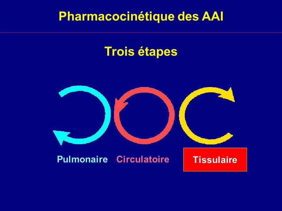 Tissulaire Circulatoire Trois étapes Pulmonaire Pharmacocinétique des AAI