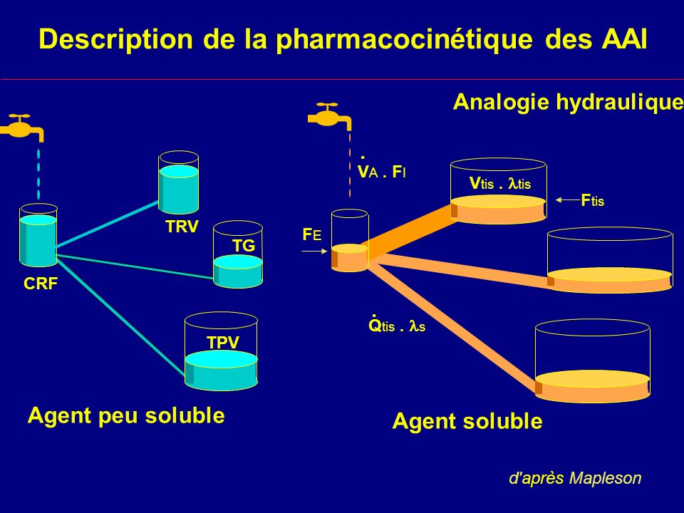 Agent soluble Q tis. s. V A. F I. V tis. tis FEFE F tis Description de la pharmacocinétique des AAI Analogie hydraulique d'après Mapleson Agent peu so