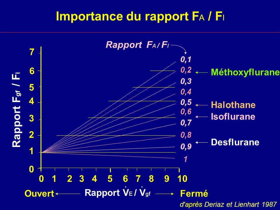 Importance du rapport F A / F I Rapport F A / F I Rapport V E / V gf..