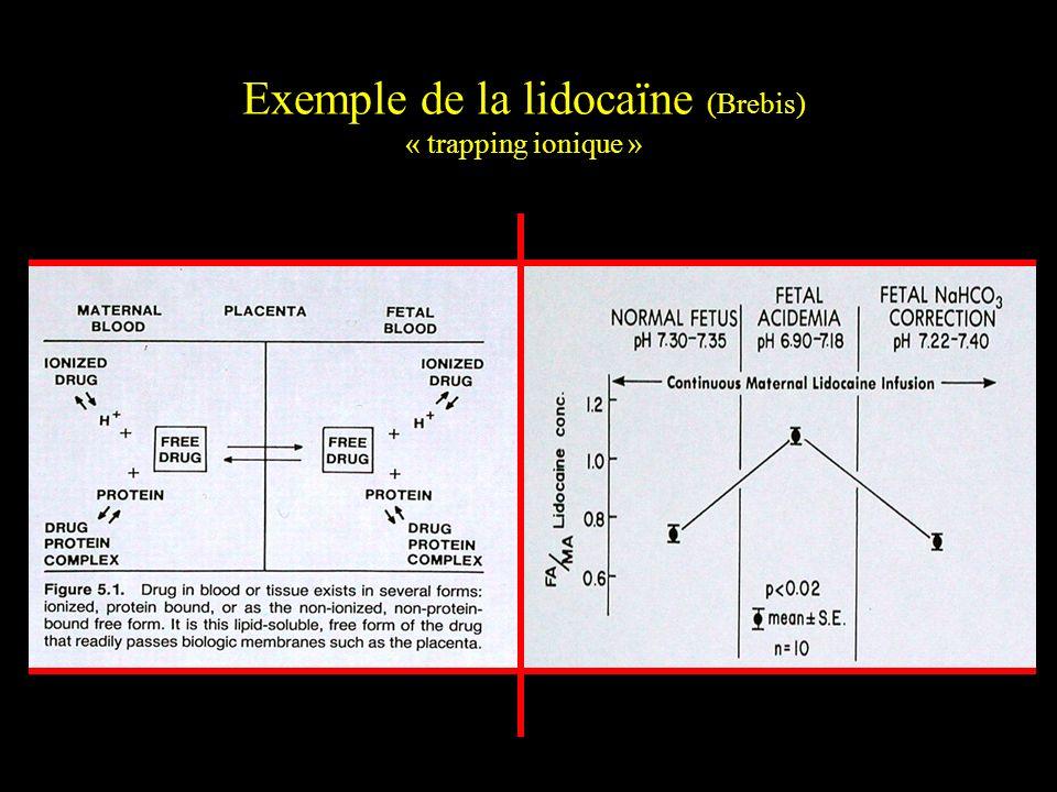 Exemple de la lidocaïne (Brebis) « trapping ionique »