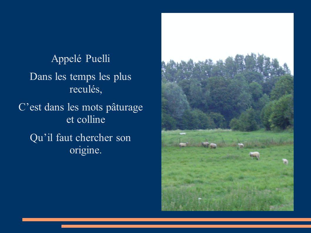 Appelé Puelli Dans les temps les plus reculés, Cest dans les mots pâturage et colline Quil faut chercher son origine.