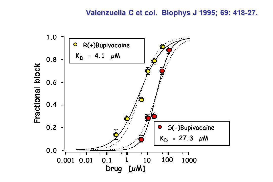 Valenzuella C et col. Biophys J 1995; 69: 418-27. R(+)Bupivacaine K = 4.1 µM D S(-)Bupivacaine K = 27.3 µM D 0.0010.010.1 1 10 100 1000 1.0 0.8 0.6 0.