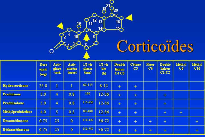 Doseéquiv(mg) Activ gluco -cort. Activ minéra -locort 1/2 vie plasm (mn) 1/2 vie bio (h) (h)Double liaison C4-C5 Cétone C3 Fluor C9 Double liaison C1-