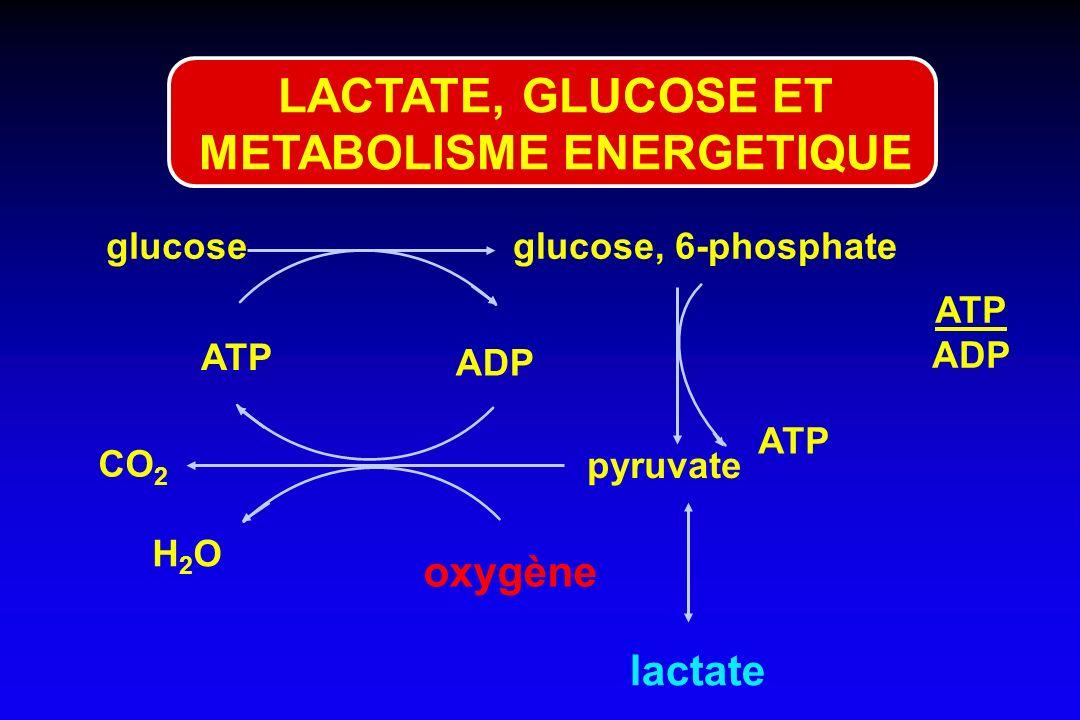 glucoseglucose, 6-phosphate ATP ADP pyruvate CO 2 oxygène lactate ATP ADP ATP H2OH2O LACTATE, GLUCOSE ET METABOLISME ENERGETIQUE