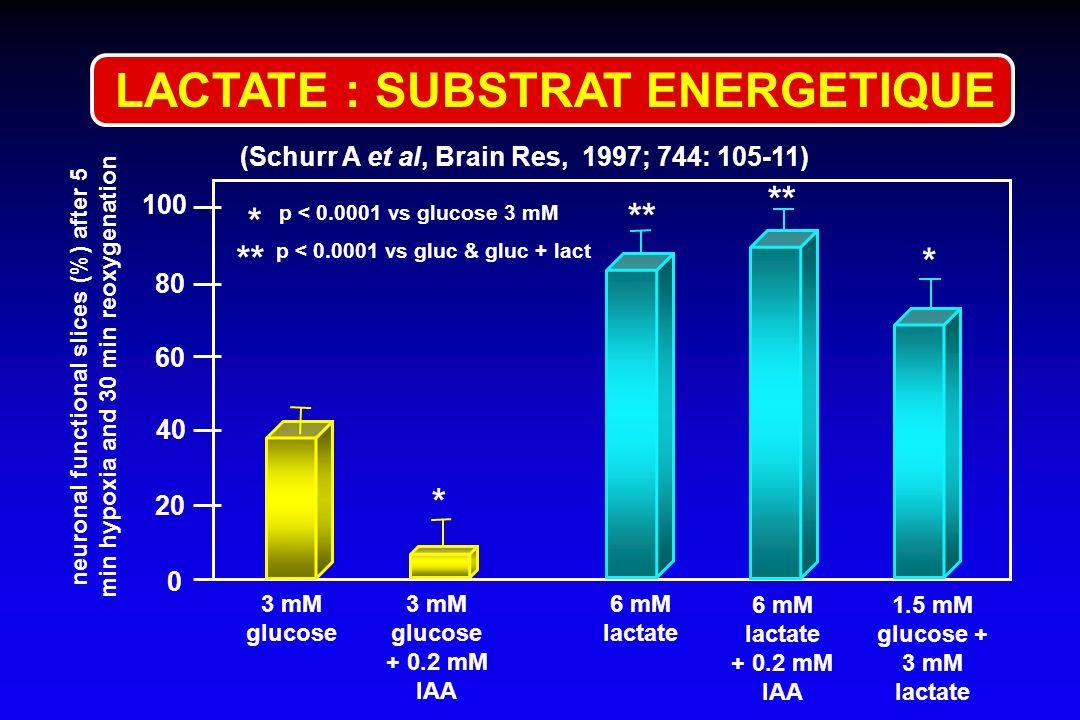 (Schurr A et al, Brain Res, 1997; 744: 105-11) 0 100 80 60 40 20 3 mM glucose + 0.2 mM IAA 6 mM lactate + 0.2 mM IAA 1.5 mM glucose + 3 mM lactate neu