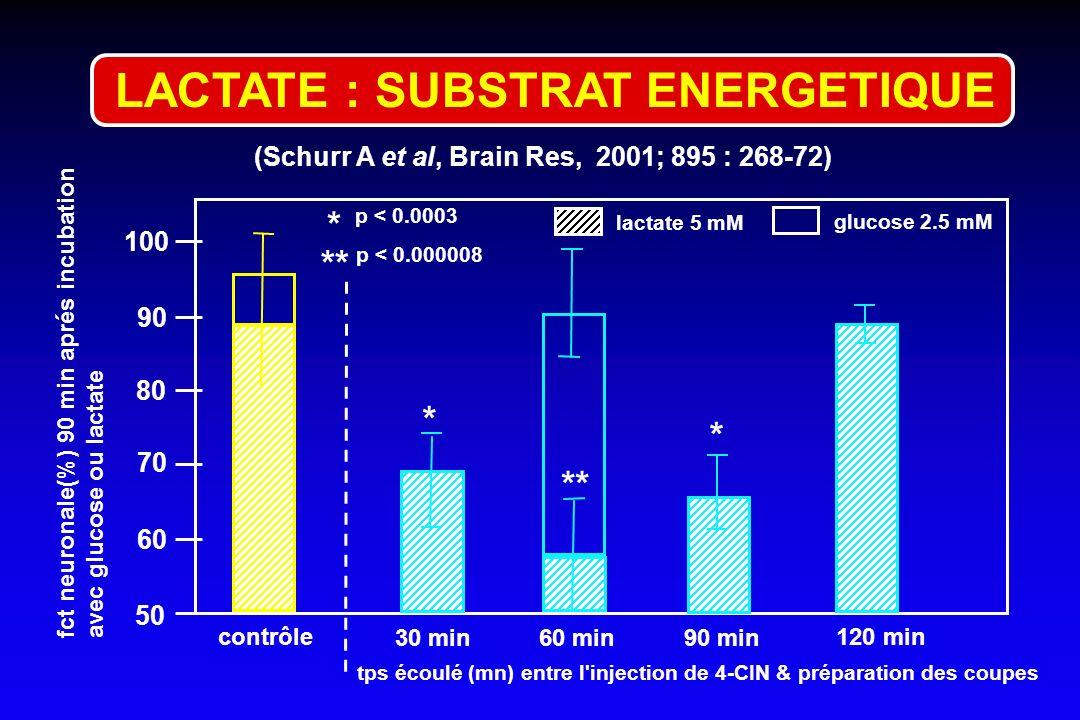 (Schurr A et al, Brain Res, 2001; 895 : 268-72) 50 90 80 70 60 contrôle 30 min 60 min * ** * * p < 0.0003 p < 0.000008 100 90 min 120 min tps écoulé (