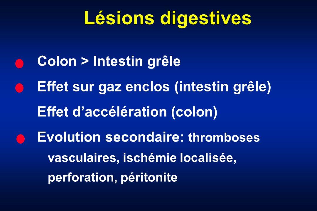 Lésions digestives Colon > Intestin grêle Effet sur gaz enclos (intestin grêle) Effet daccélération (colon) Evolution secondaire: thromboses vasculair