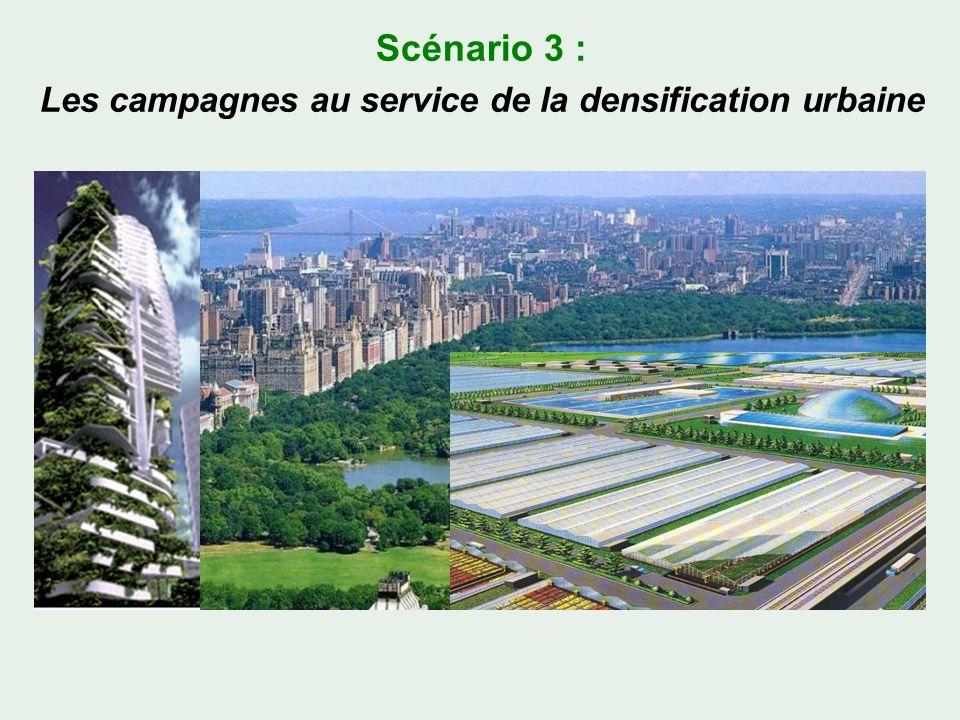 Scénario 3 : Les campagnes au service de la densification urbaine