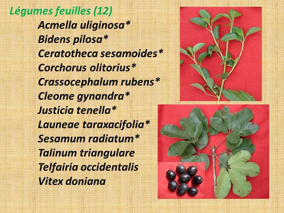 Légumes feuilles (12) Acmella uliginosa* Bidens pilosa* Ceratotheca sesamoides* Corchorus olitorius* Crassocephalum rubens* Cleome gynandra* Justicia