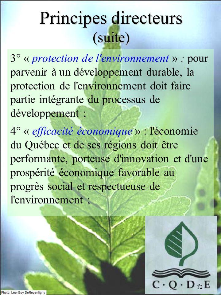 12 Principes directeurs (suite) 3° « protection de l'environnement » : pour parvenir à un développement durable, la protection de l'environnement doit