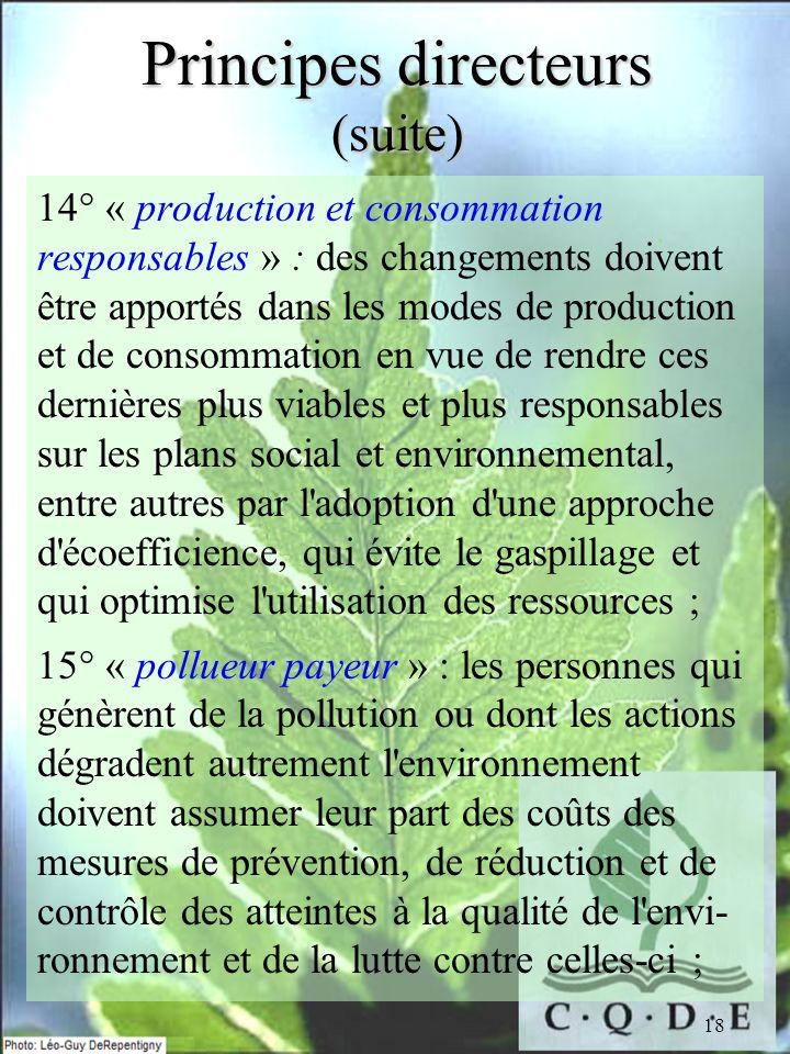 18 Principes directeurs (suite) 14° « production et consommation responsables » : des changements doivent être apportés dans les modes de production e