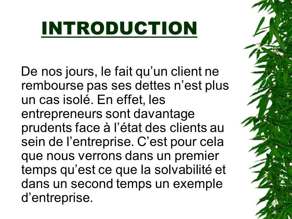 SOMMAIRE I- La solvabilité A) Définition B) Les différentes pratiques des PME II- Cas particulier A) les sites web: différentes pratiques utilisées B) exemple