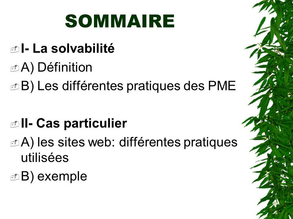 SOMMAIRE I- La solvabilité A) Définition B) Les différentes pratiques des PME II- Cas particulier A) les sites web: différentes pratiques utilisées B)