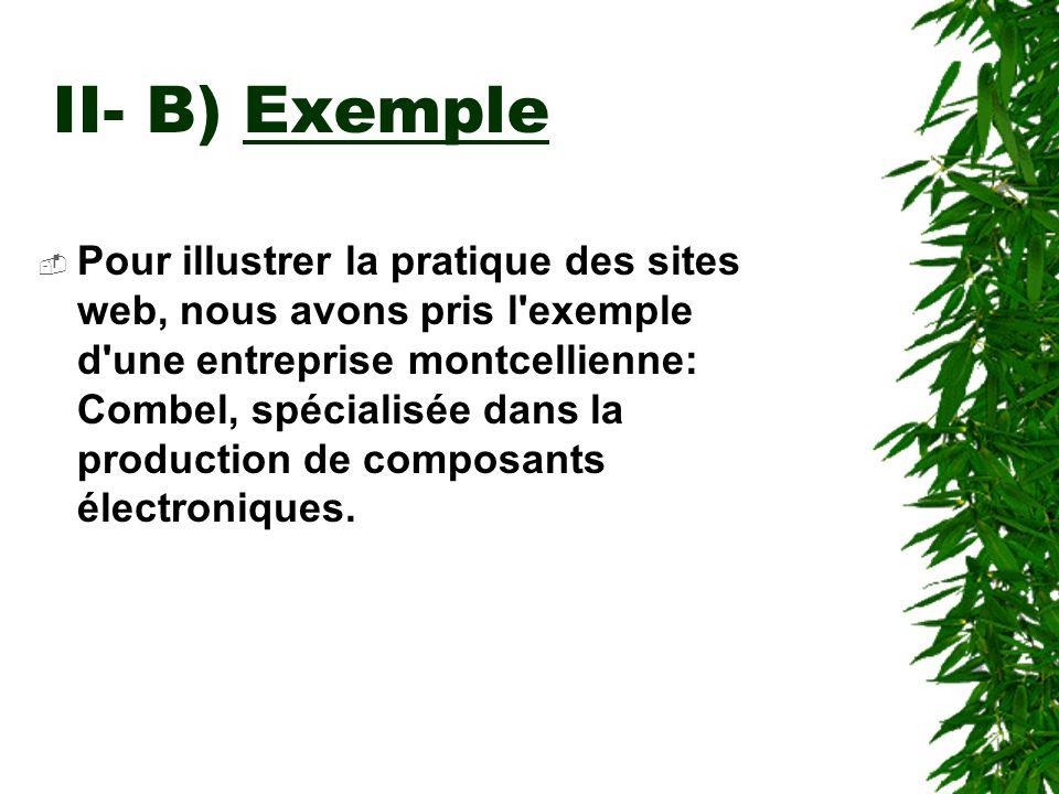 II- B) Exemple Pour illustrer la pratique des sites web, nous avons pris l'exemple d'une entreprise montcellienne: Combel, spécialisée dans la product