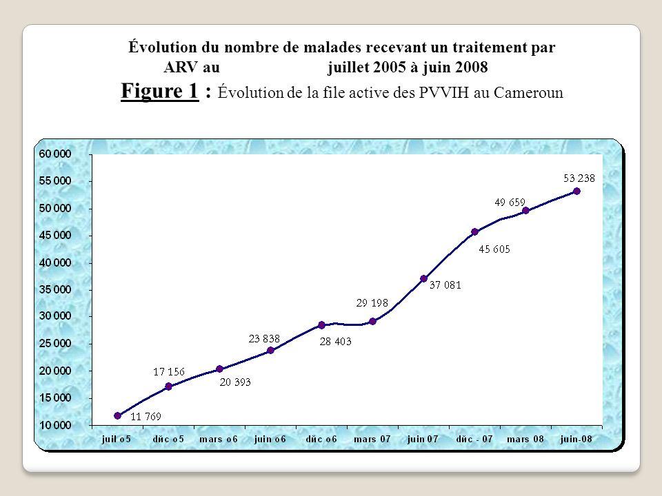 Évolution du nombre de malades recevant un traitement par ARV au juillet 2005 à juin 2008 Figure 1 : Évolution de la file active des PVVIH au Cameroun