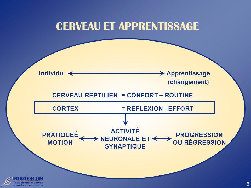 6 CERVEAU ET APPRENTISSAGE IndividuApprentissage (changement) CERVEAU REPTILIEN= CONFORT – ROUTINE CORTEX= RÉFLEXION - EFFORT PRATIQUEÉ MOTION ACTIVIT