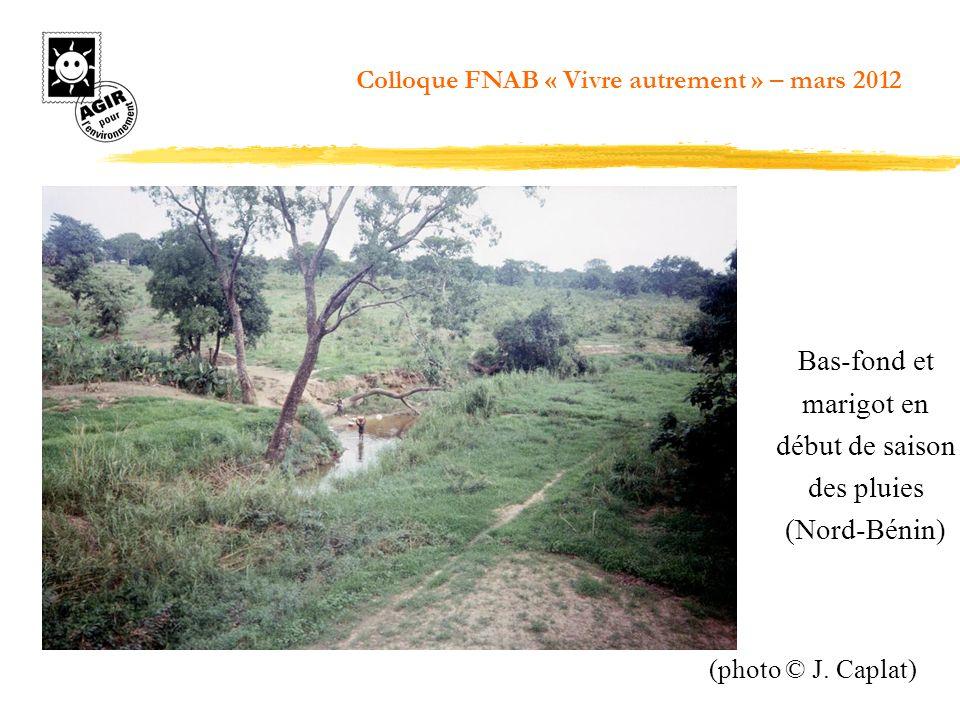 Bas-fond et marigot en début de saison des pluies (Nord-Bénin) (photo © J. Caplat) Colloque FNAB « Vivre autrement » – mars 2012