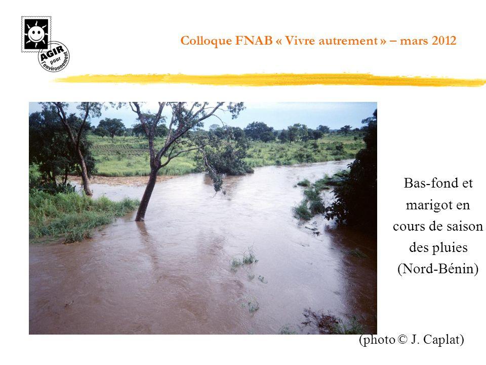 Bas-fond et marigot en cours de saison des pluies (Nord-Bénin) (photo © J. Caplat) Colloque FNAB « Vivre autrement » – mars 2012