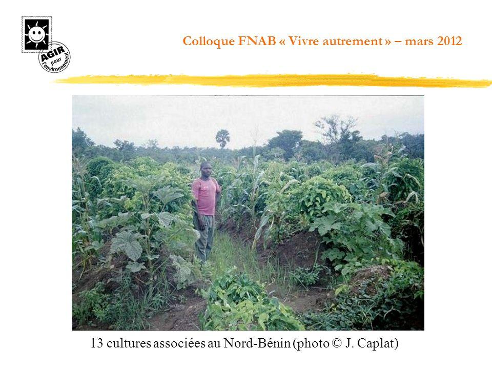 13 cultures associées au Nord-Bénin (photo © J. Caplat) Colloque FNAB « Vivre autrement » – mars 2012