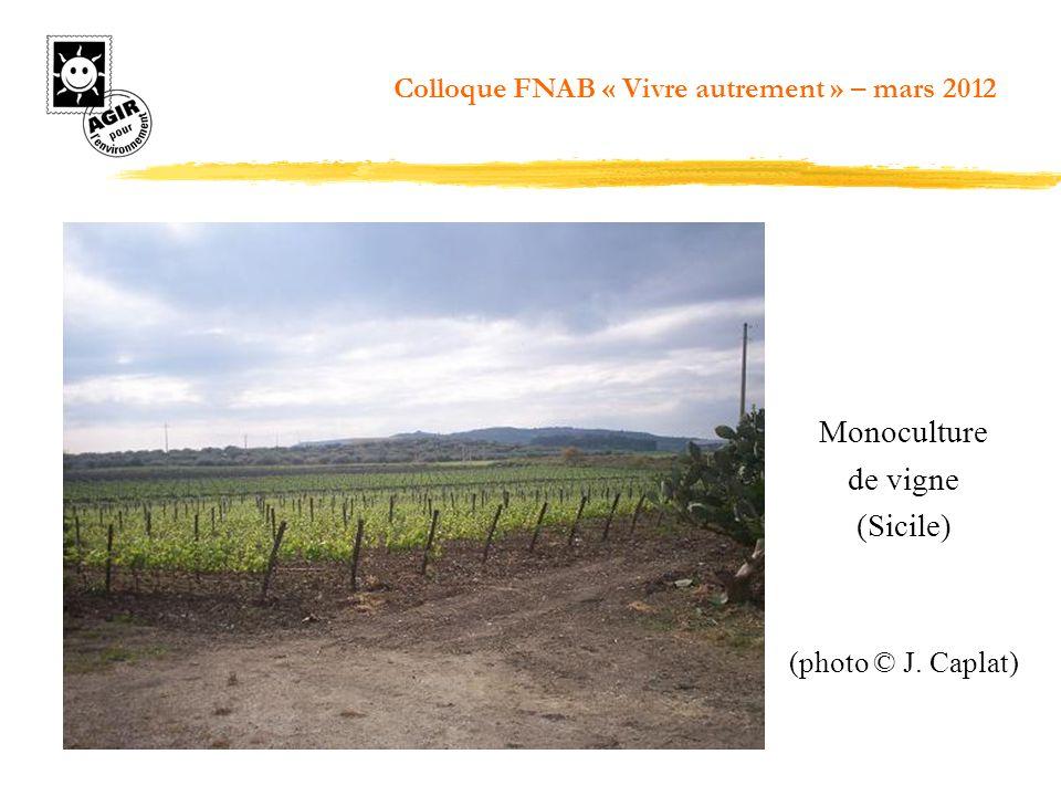 Monoculture de vigne (Sicile) (photo © J. Caplat) Colloque FNAB « Vivre autrement » – mars 2012