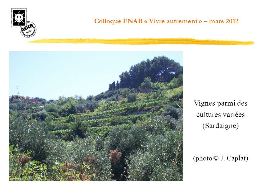 Vignes parmi des cultures variées (Sardaigne) (photo © J. Caplat) Colloque FNAB « Vivre autrement » – mars 2012