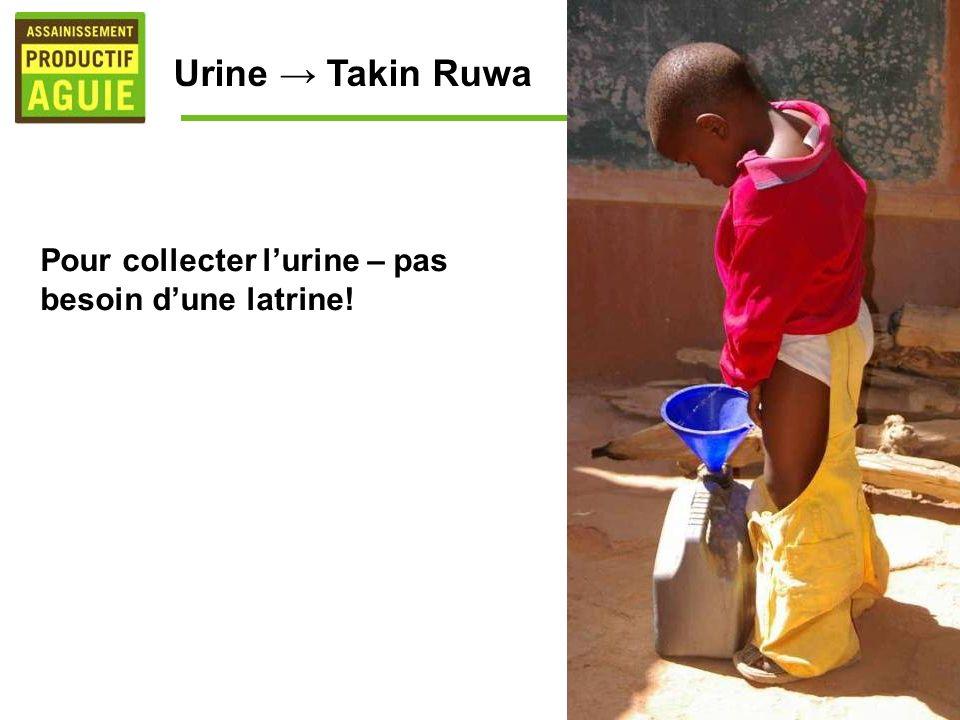 Pour collecter lurine – pas besoin dune latrine! Urine Takin Ruwa