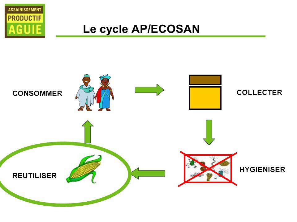Le cycle AP/ECOSAN COLLECTER CONSOMMER REUTILISER HYGIENISER