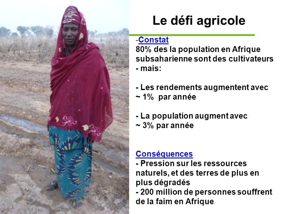 Le défi agricole -Constat 80% des la population en Afrique subsaharienne sont des cultivateurs - mais: - Les rendements augmentent avec ~ 1% par année