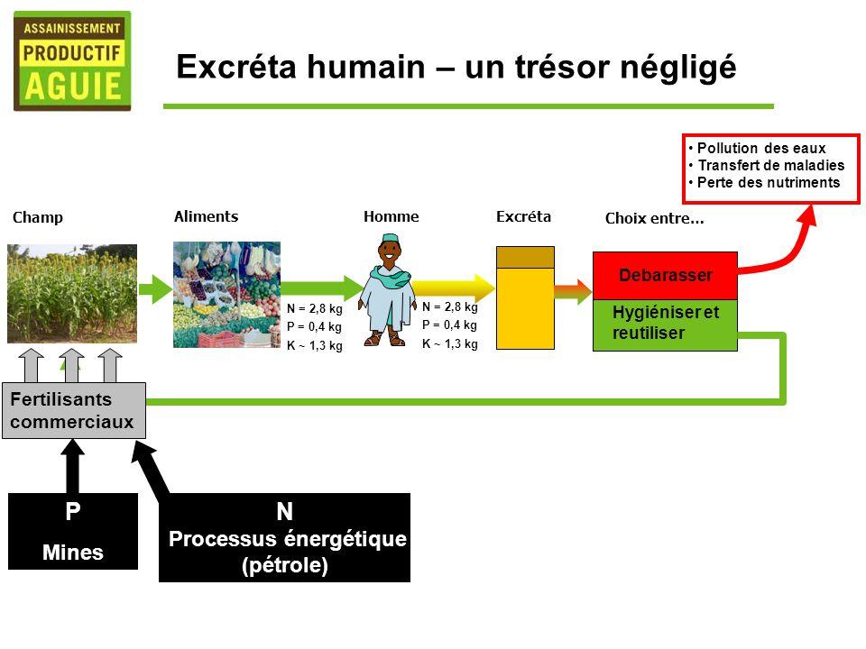 N = 2,8 kg P = 0,4 kg K ~ 1,3 kg N = 2,8 kg P = 0,4 kg K ~ 1,3 kg Hygiéniser et reutiliser Debarasser Pollution des eaux Transfert de maladies Perte d