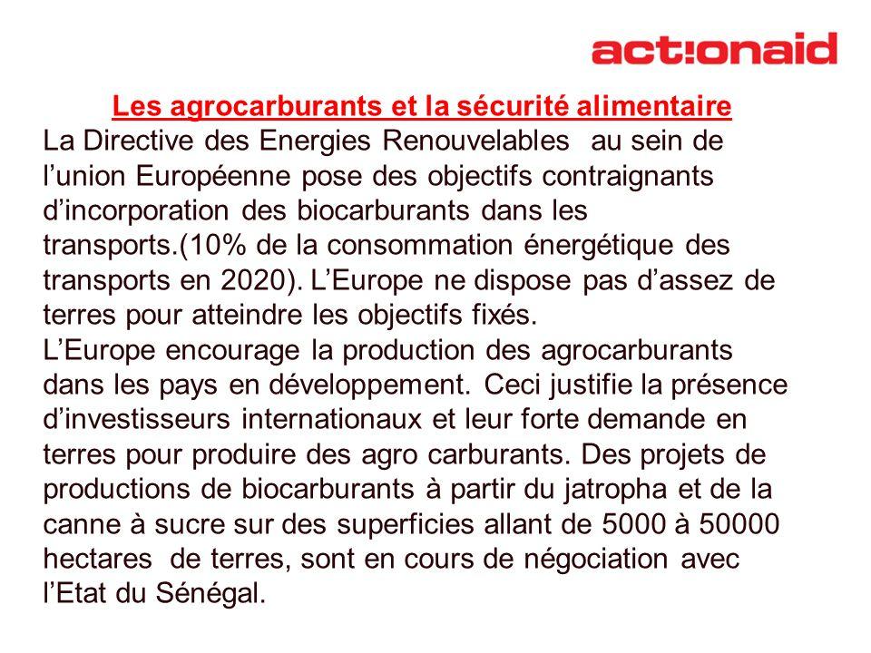 Les agrocarburants et la sécurité alimentaire La Directive des Energies Renouvelables au sein de lunion Européenne pose des objectifs contraignants di