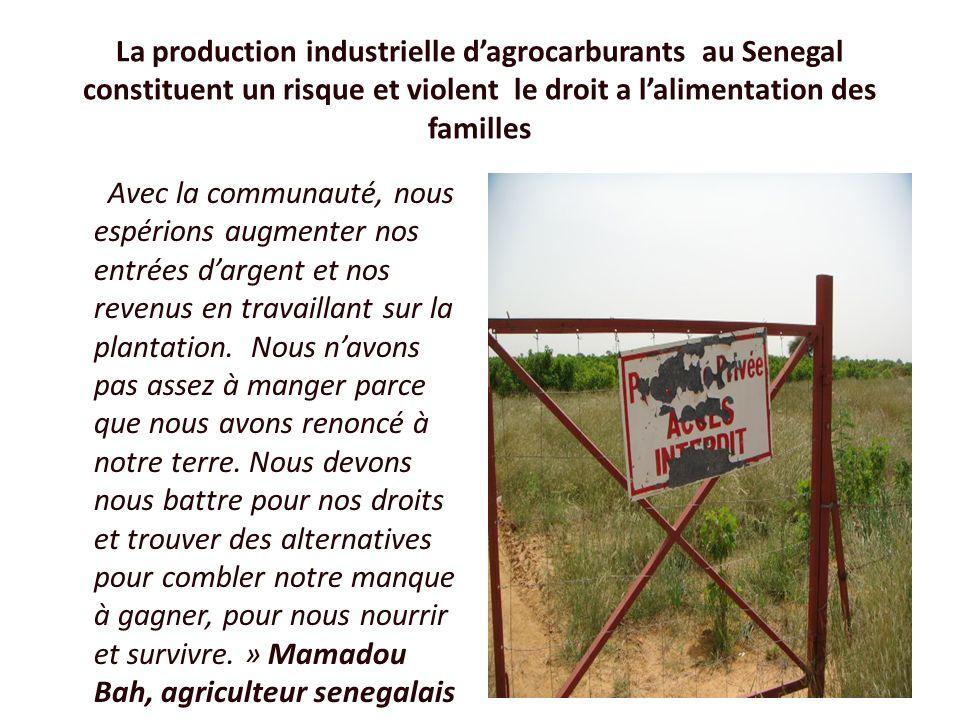 La production industrielle dagrocarburants au Senegal constituent un risque et violent le droit a lalimentation des familles Avec la communauté, nous