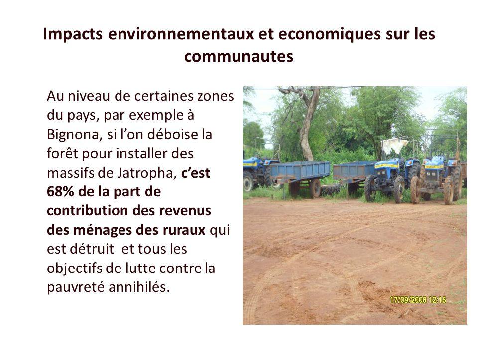 Impacts environnementaux et economiques sur les communautes Au niveau de certaines zones du pays, par exemple à Bignona, si lon déboise la forêt pour