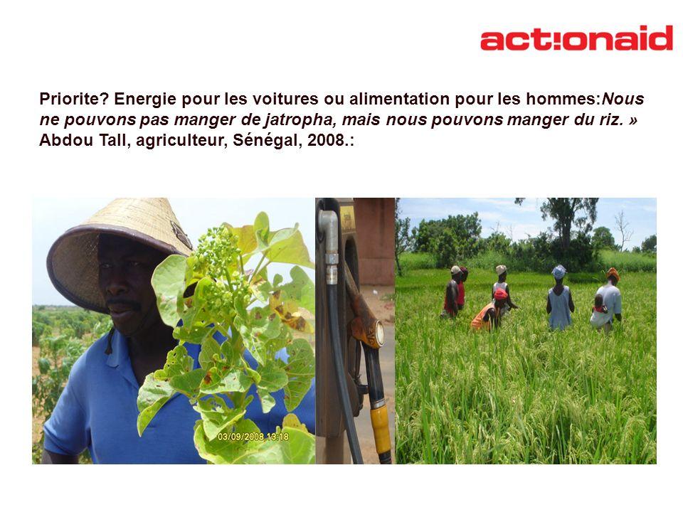 Priorite? Energie pour les voitures ou alimentation pour les hommes:Nous ne pouvons pas manger de jatropha, mais nous pouvons manger du riz. » Abdou T