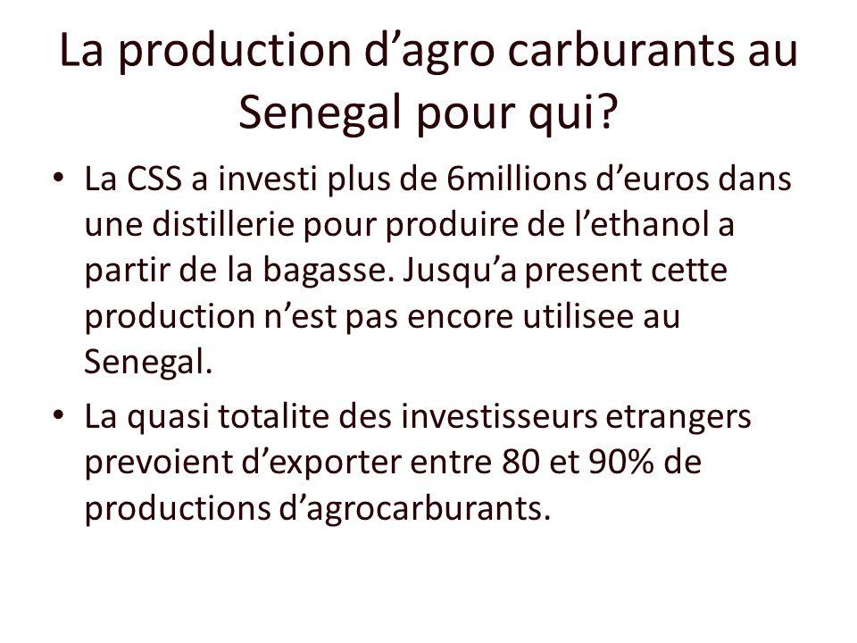 La production dagro carburants au Senegal pour qui? La CSS a investi plus de 6millions deuros dans une distillerie pour produire de lethanol a partir
