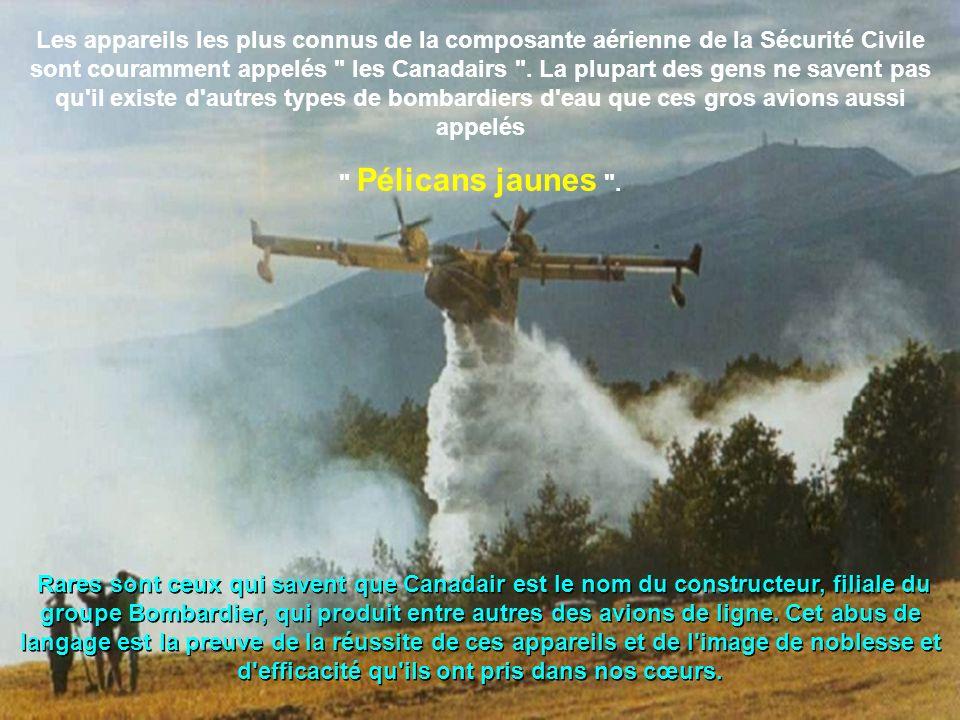 Les appareils les plus connus de la composante aérienne de la Sécurité Civile sont couramment appelés les Canadairs .