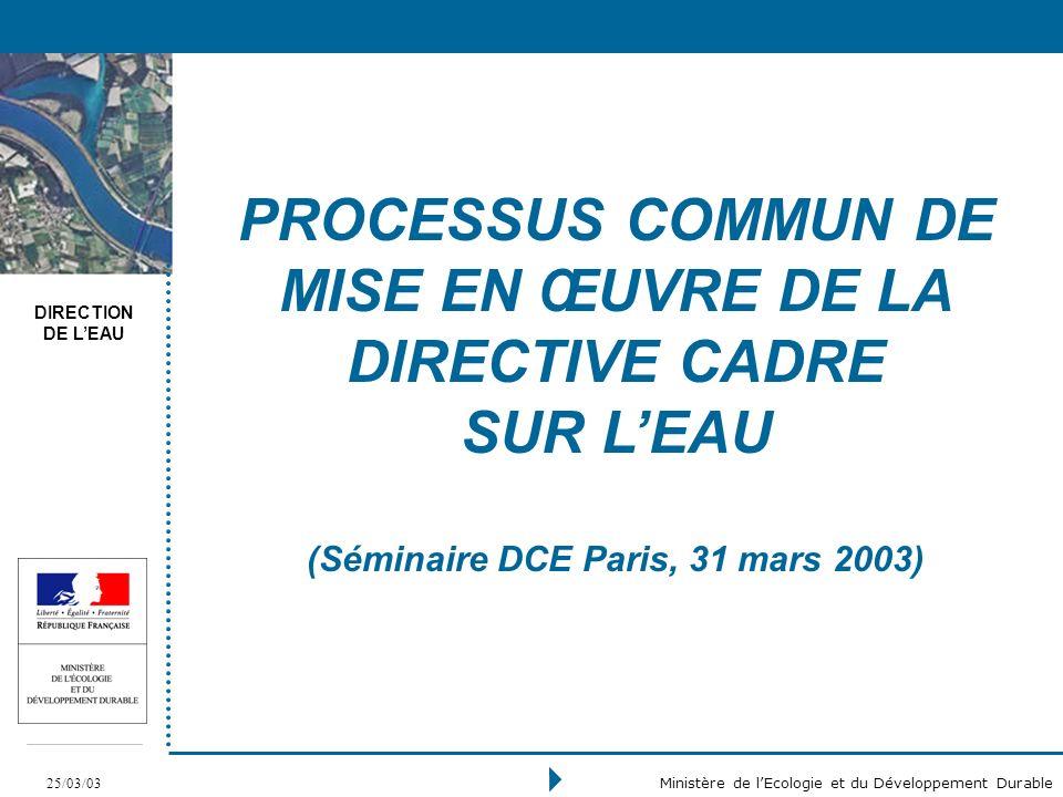 DIRECTION DE LEAU 25/03/03 Ministère de lEcologie et du Développement Durable PROCESSUS COMMUN DE MISE EN ŒUVRE DE LA DIRECTIVE CADRE SUR LEAU (Séminaire DCE Paris, 31 mars 2003)