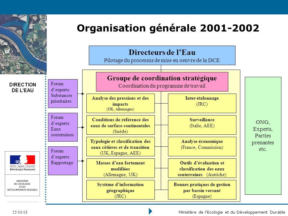 DIRECTION DE LEAU 25/03/03 Ministère de lEcologie et du Développement Durable Organisation générale 2001-2002 ONG, Experts, Parties prenantes etc.