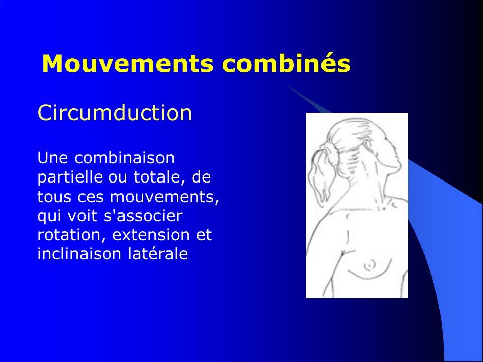 Circumduction Une combinaison partielle ou totale, de tous ces mouvements, qui voit s'associer rotation, extension et inclinaison latérale Mouvements