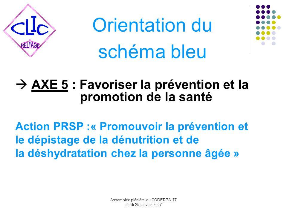 Assemblée plénière du CODERPA 77 jeudi 25 janvier 2007 Orientation du schéma bleu AXE 5 : Favoriser la prévention et la promotion de la santé Action P