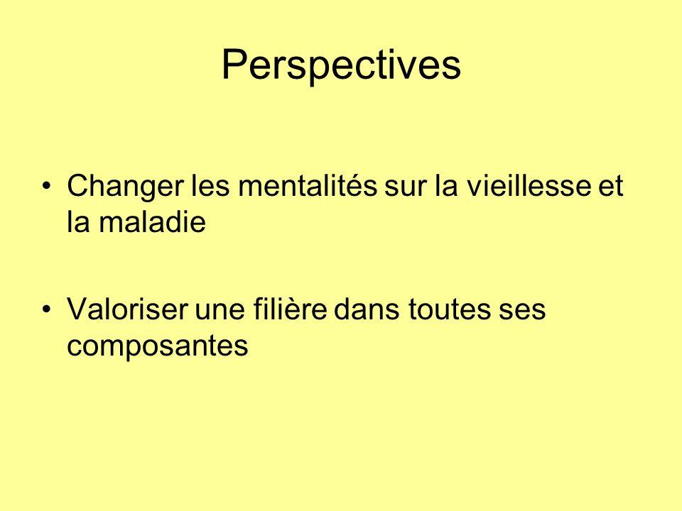 Perspectives Changer les mentalités sur la vieillesse et la maladie Valoriser une filière dans toutes ses composantes