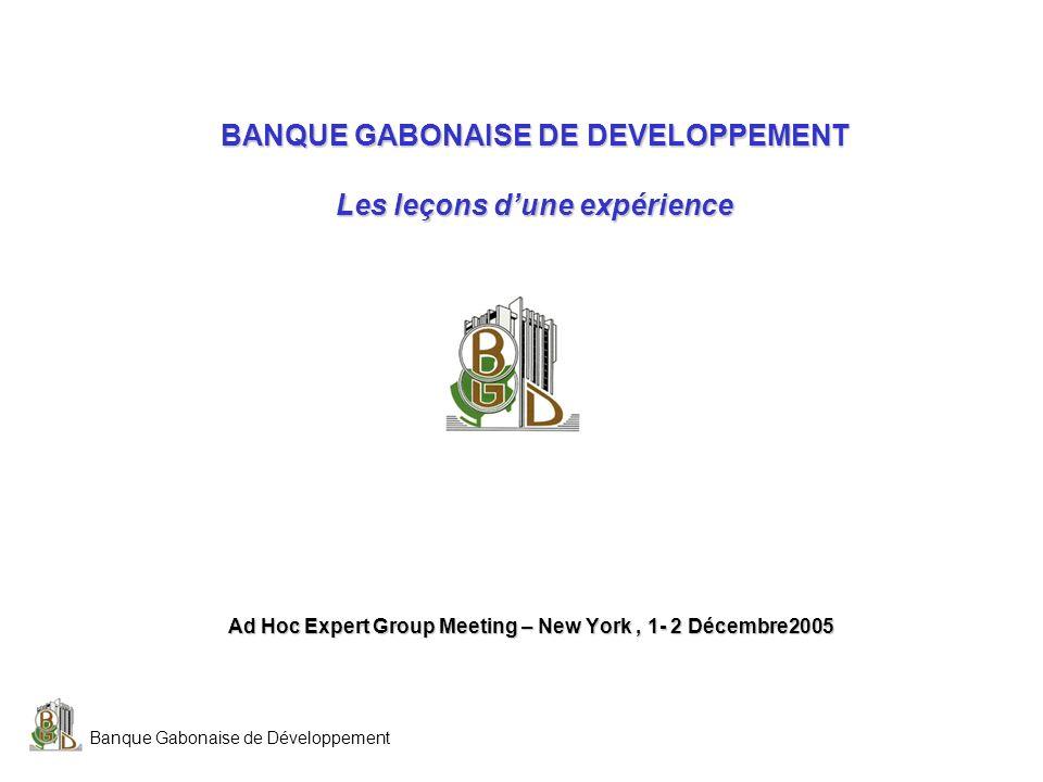 Banque Gabonaise de Développement BANQUE GABONAISE DE DEVELOPPEMENT Les leçons dune expérience Ad Hoc Expert Group Meeting – New York, 1- 2 Décembre20