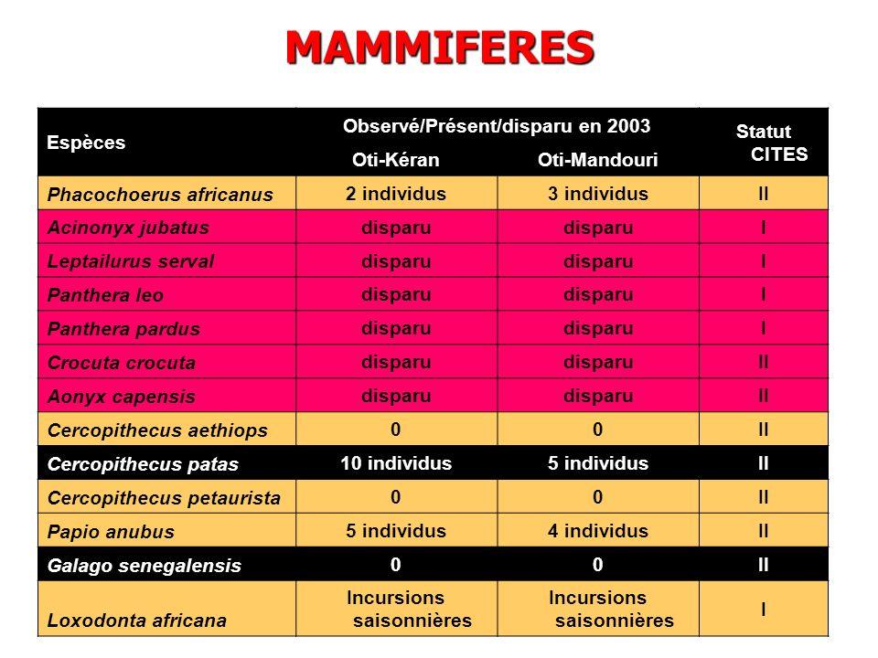 Espèces Observé/Présent/disparu en 2003 Statut CITES Oti-KéranOti-Mandouri Phacochoerus africanus 2 individus3 individusII Acinonyx jubatus disparu I