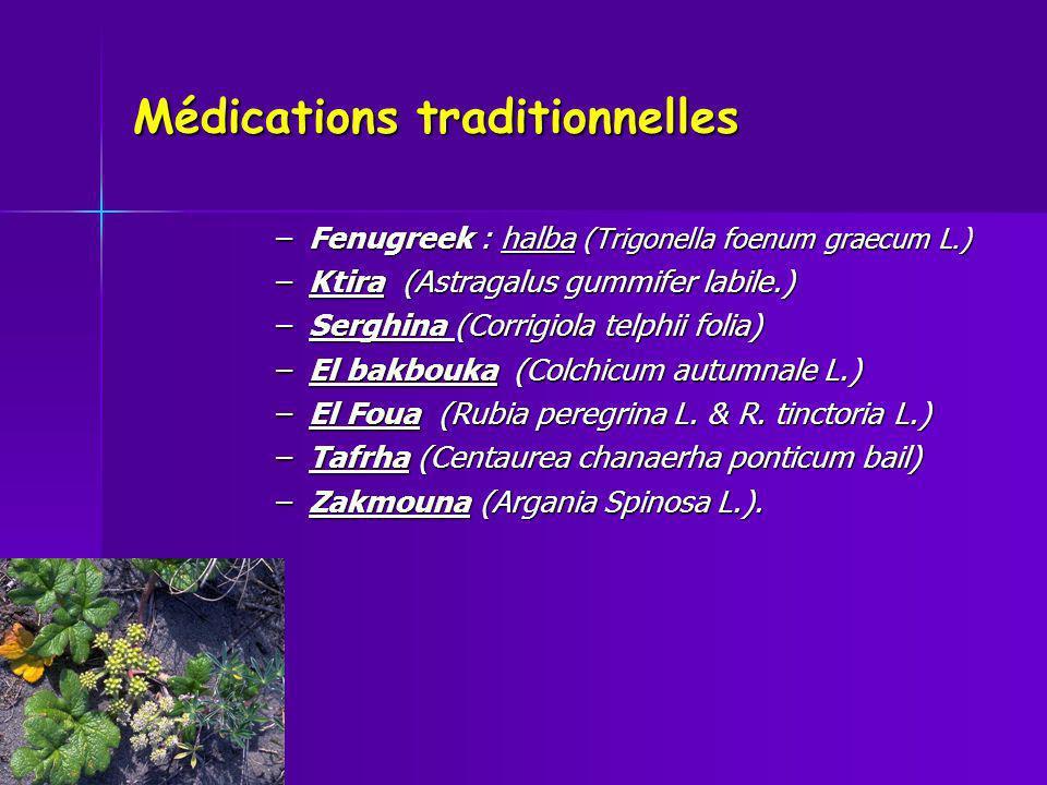 Médications traditionnelles –Fenugreek : halba (Trigonella foenum graecum L.) –Ktira (Astragalus gummifer labile.) –Serghina (Corrigiola telphii folia