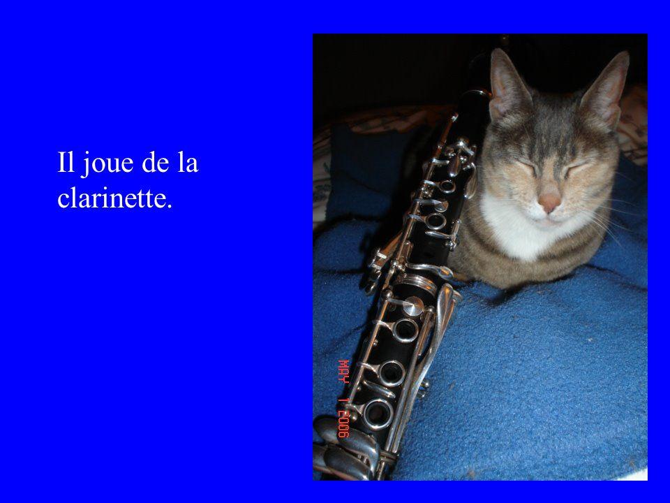 Il joue de la clarinette.