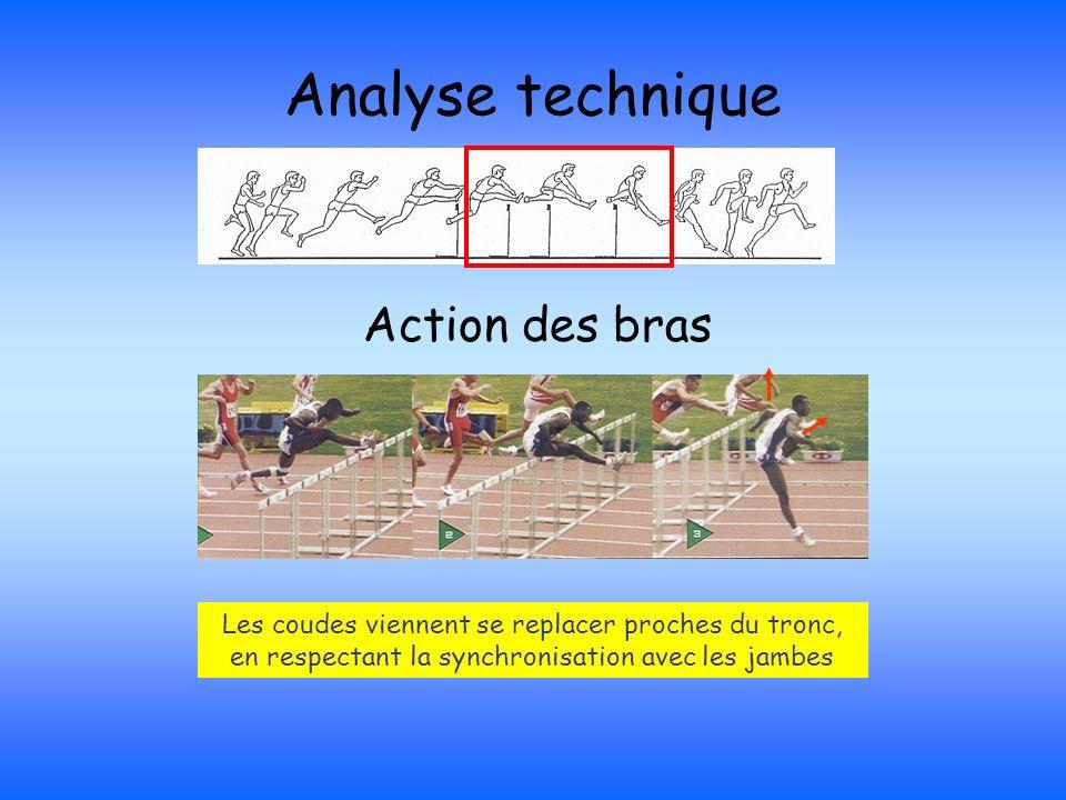Analyse technique Action des bras Les coudes viennent se replacer proches du tronc, en respectant la synchronisation avec les jambes