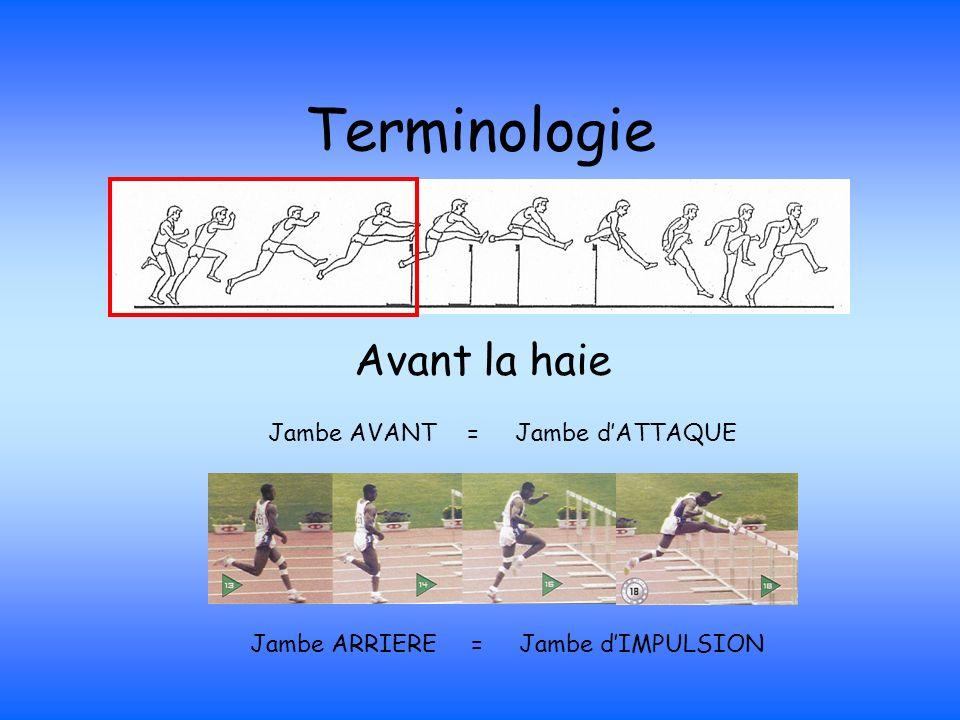 Terminologie Avant la haie Jambe AVANT = Jambe dATTAQUE Jambe ARRIERE = Jambe dIMPULSION