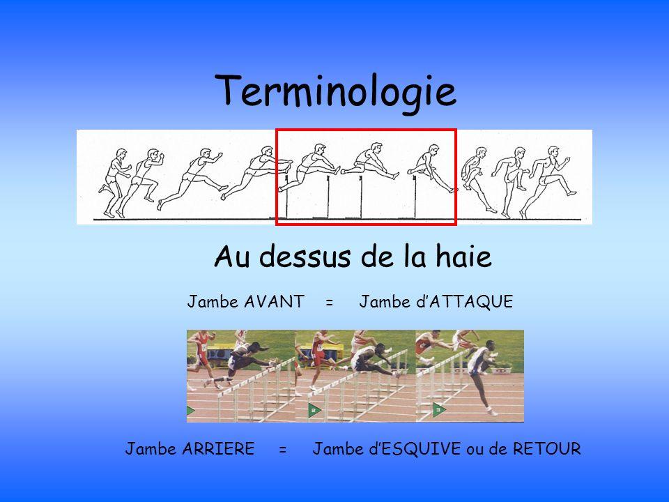 Terminologie Au dessus de la haie Jambe AVANT = Jambe dATTAQUE Jambe ARRIERE = Jambe dESQUIVE ou de RETOUR