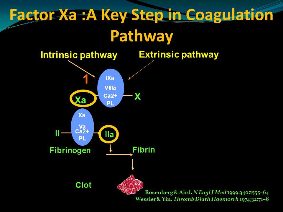 Factor Xa :A Key Step in Coagulation Pathway Rosenberg & Aird. N Engl J Med 1999;340:1555–64 Wessler & Yin. Thromb Diath Haemorrh 1974;32:71–8 Intrins